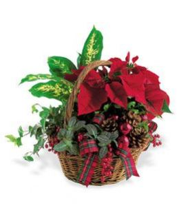 Holiday Planter Basket