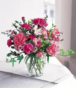 Cheerful Carnations