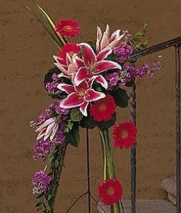 Stargazer Lily and Gerbera Spray